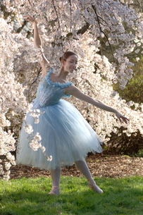Ballerina under flowering treeの写真素材 [FYI01987931]