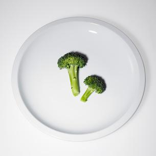 Raw broccoliの写真素材 [FYI01988589]