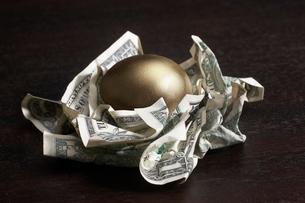 Golden egg in nest of dollar billsの写真素材 [FYI01988986]