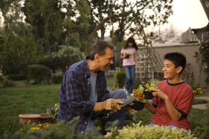 Grandpa and grandson gardening togetherの写真素材 [FYI01989405]