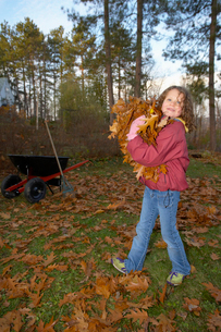 Young girl carrying autumn leavesの写真素材 [FYI01989660]