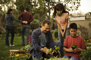 Grandpa and grandson gardening togetherの写真素材 [FYI01990029]