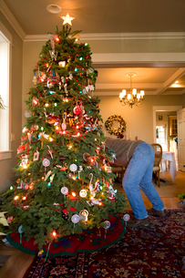 Man setting up Christmas treeの写真素材 [FYI01990342]