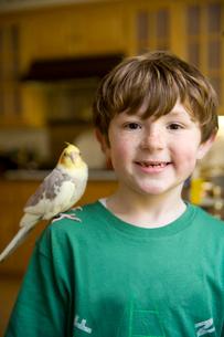 Boy with bird on shoulderの写真素材 [FYI01990430]