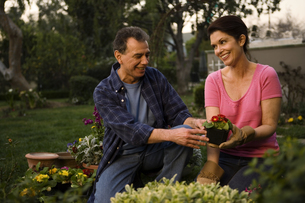 Mature couple gardening togetherの写真素材 [FYI01990527]