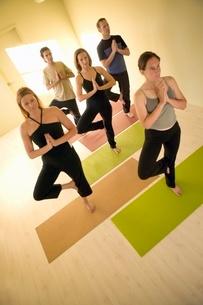 People practicing yoga, tree poseの写真素材 [FYI01990533]