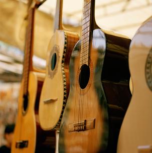 Guitars on display in storeの写真素材 [FYI01990721]