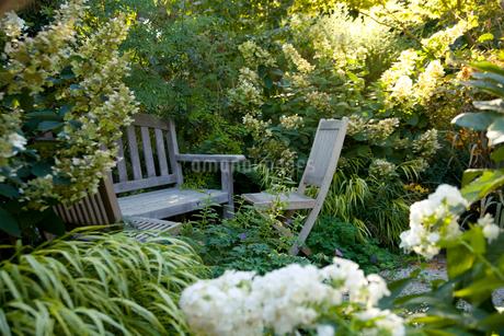Wooden backyard furnitureの写真素材 [FYI01991000]