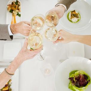 Couples toasting with wineの写真素材 [FYI01992522]