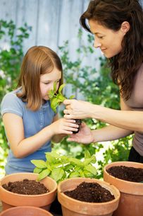 Mother letting daughter smell plantの写真素材 [FYI01992762]