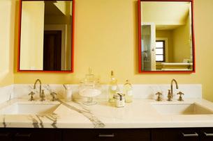 Contemporary Master Bathroom Vanityの写真素材 [FYI01992820]