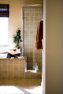 Master Bathroom with Shower and Tubの写真素材 [FYI01992870]