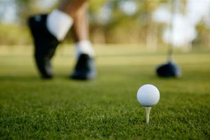 Teed golf ball on courseの写真素材 [FYI01992903]