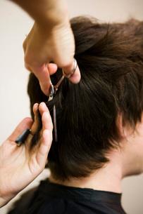 Female hairdresser cutting man's hairの写真素材 [FYI01992941]