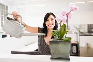 woman watering potted plantの写真素材 [FYI01993065]