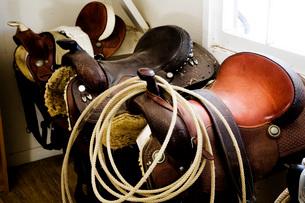 Group of Three Horse Saddlesの写真素材 [FYI01993077]
