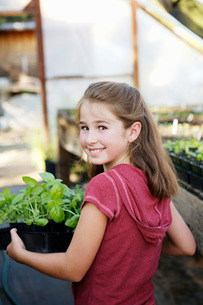 Girl carrying potted plantsの写真素材 [FYI01993213]