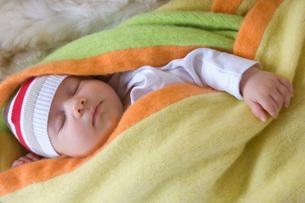 Newborn sleeping in blanketの写真素材 [FYI01993713]