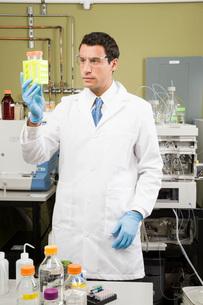 Male scientist examining vialsの写真素材 [FYI01993774]