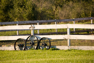 Wagon wheels leaning on fenceの写真素材 [FYI01993915]