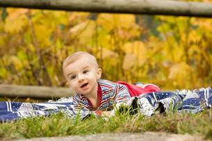 Curious baby in grassの写真素材 [FYI01994071]
