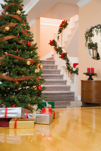 Home and tree decorated for the holidaysの写真素材 [FYI01994097]