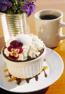 Gourmet dessertの写真素材 [FYI01994152]