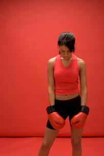 boxer restingの写真素材 [FYI01994170]
