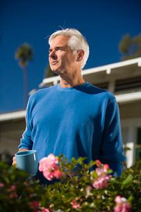 Senior man gardeningの写真素材 [FYI01994264]