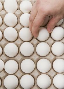 Hand choosing egg from cartonの写真素材 [FYI01994876]