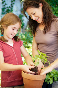 Mother and daughter potting plantsの写真素材 [FYI01995116]