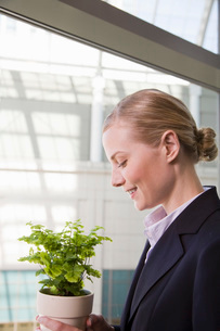 woman looking at potted plantの写真素材 [FYI01995140]