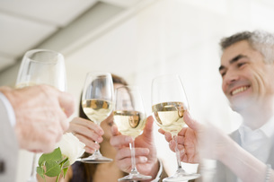 Friends toasting with wineの写真素材 [FYI01995698]