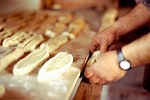 Baker shaping doughの写真素材 [FYI01996462]