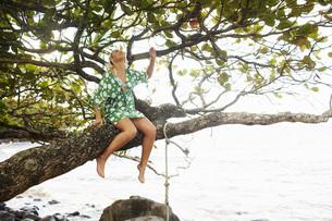 Woman sitting on tree branchの写真素材 [FYI01996484]