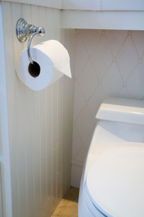 Toilet Paper Next to Closed Toiletの写真素材 [FYI01996620]