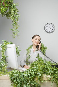 Businesswoman in plant covered officeの写真素材 [FYI01996650]