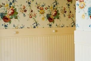 Detail of wallpaperの写真素材 [FYI01996675]