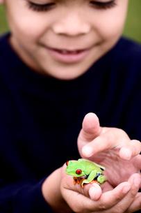 Latin American boy holding small frogの写真素材 [FYI01996703]