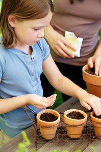 Mother and daughter planting seedsの写真素材 [FYI01996838]