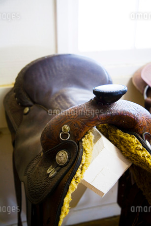 Leather Horse Saddleの写真素材 [FYI01997060]