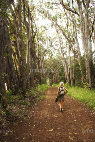 Woman hiking in woodsの写真素材 [FYI01997130]