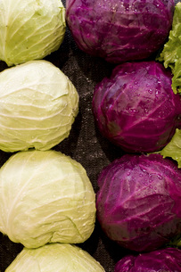 Close up of cabbage in grocery storeの写真素材 [FYI01997343]