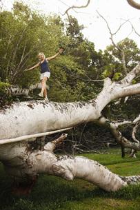 Woman walking on fallen treeの写真素材 [FYI01997356]