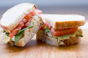 Close up of egg salad sandwichの写真素材 [FYI01997940]