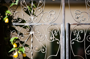 Detail of Wrought Iron Gateの写真素材 [FYI01997955]
