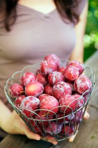 Woman holding basket of fruitの写真素材 [FYI01998033]
