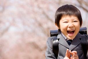 入学式イメージの写真素材 [FYI01999591]