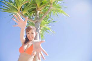 アカタコノキの側で手を伸ばす笑顔の水着女性の写真素材 [FYI02000425]
