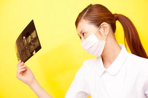 レントゲンを見る歯科衛生士の写真素材 [FYI02000755]
